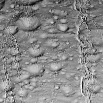 Wrinkled Craters