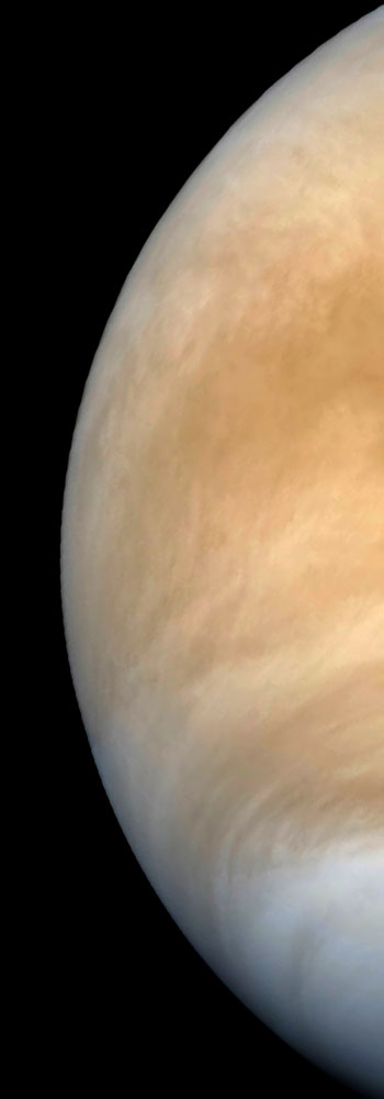 slice-of-venus