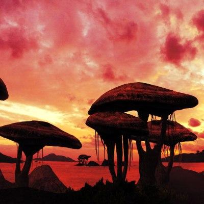 proxima-b-shroomworld